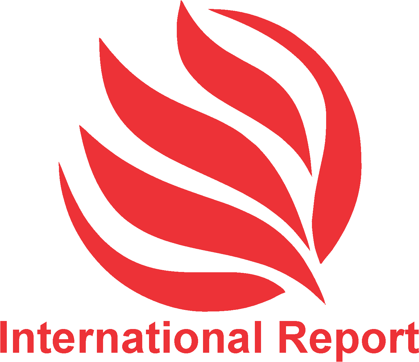 International Report